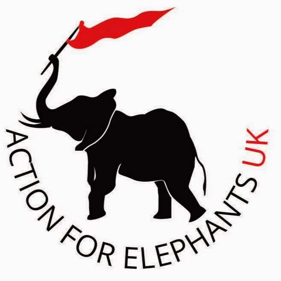 action-for-elephants-uk